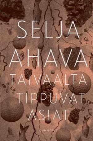 2-book-Selja